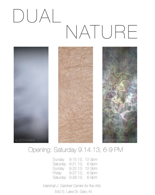 dual_nature_poster